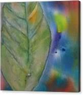 One Big Leaf Canvas Print