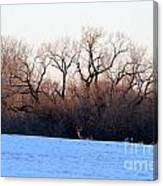 One Buck At A Time Canvas Print