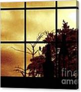 One Crow Outside My Window Canvas Print