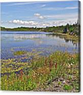 One Of Many Lakes In Newfoundland Canvas Print