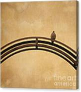 One Pigeon Perched On A Metallic Arch. Canvas Print