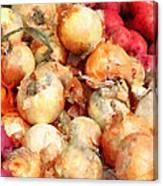 Onions Closeup Canvas Print