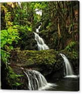 Onomea Falls Canvas Print