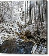 Onomea Stream In Infrared Canvas Print
