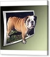 Oof Dog Canvas Print
