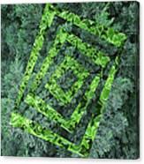 Op Art Garden 2 Canvas Print