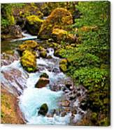 Opal Rivers Canvas Print
