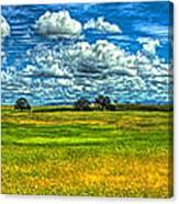 Open Pastures Canvas Print