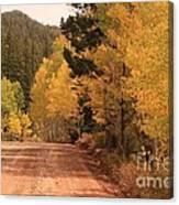 Open Road 4 Canvas Print