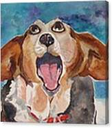 Opera Dog Canvas Print