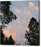 Opposite The Sunset Canvas Print