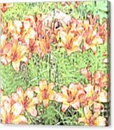 Orange Asiatic Lilies Canvas Print