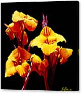Orange Cannas Canvas Print