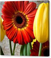 Orange Daisy With Tulips Canvas Print