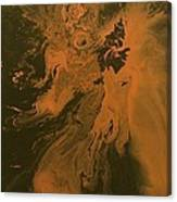 Orange Dragon Canvas Print
