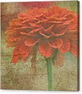 Orange Floral Fantasy Canvas Print