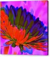 Orange Flower From Side Canvas Print
