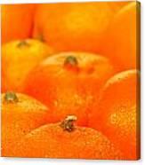 Orange Oranges Canvas Print