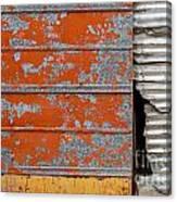 Orange Paint Canvas Print