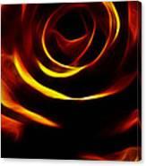 Orange Passion Rose Canvas Print