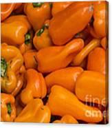 Orange Peppers Canvas Print