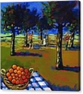 Orange Picking Canvas Print