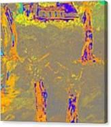 Orange Shadows Canvas Print