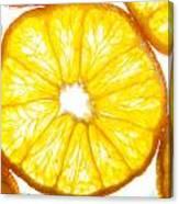 Orange. Canvas Print