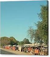 Orange Stalls Canvas Print