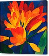 Orange Tropical Flowers Canvas Print