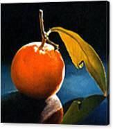 Orange With Leaf Canvas Print