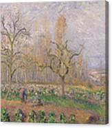 Orchard At Pontoise Canvas Print