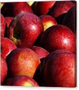 Orchard Fresh Canvas Print