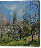 Orchard In Spring Canvas Print