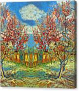 Orchards Canvas Print