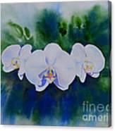 Orchid Blast Canvas Print
