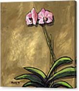 Orchid On Khaki Canvas Print