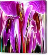 Orchid Splat Canvas Print