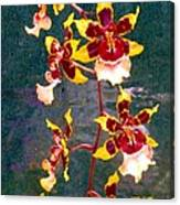 Orchid Spray By Pottery  Canvas Print