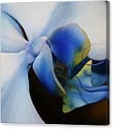 Orchid Taste Canvas Print