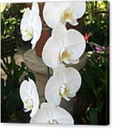 Orchid Tower Canvas Print
