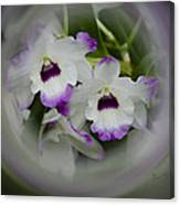 Orchid Wine Swirl Canvas Print
