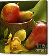 Orchid With Pears Canvas Print