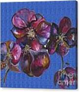 Orchids Blue Canvas Print