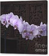Orchids Loretta Canvas Print