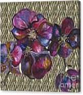 Orchids Zebra Canvas Print