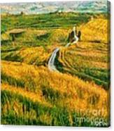Orcia Valley Canvas Print