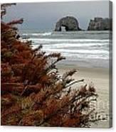 Oregon Beach Canvas Print