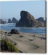 Oregon Coast 1 Canvas Print