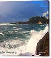 Oregon Coast 9 Canvas Print